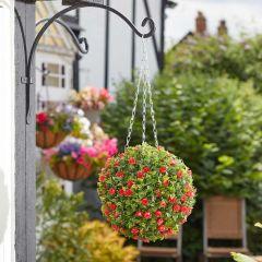 Smart Garden - Boxwood Ball