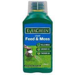 Evergreen - Liquid Feed & Moss