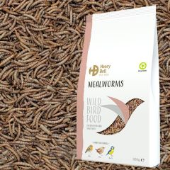 Henry Bell - Mealworm