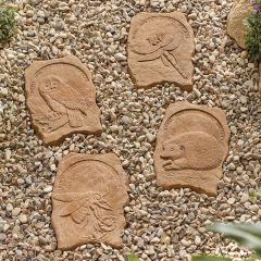 Kelkay - RHS Stepping Stone