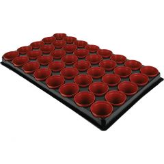 Grow It - Seed & Cutting Pot Tray - 40 Pack