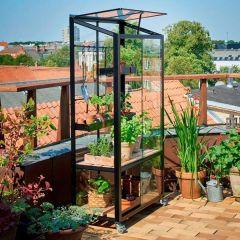 Juliana - City Greenhouse